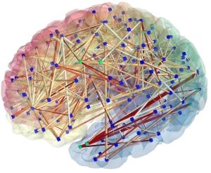 brainnetwork