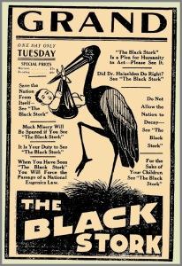 theblackstork